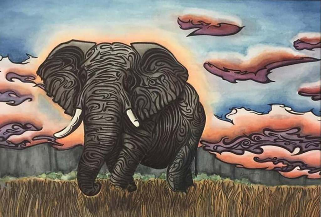 I used doodling to give the impression of the wrinkles and such in the elephant. 20479816_1020992322