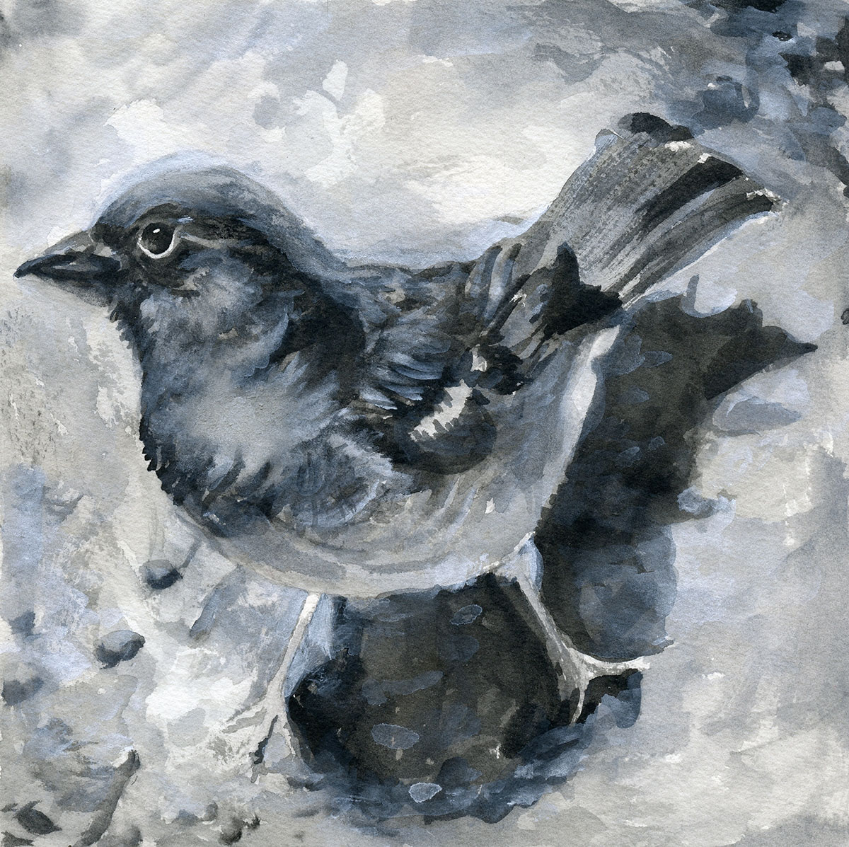 #WorldWatercolorGroup - Watercolor by Sandra Strait - House Sparrow - Doodlewash