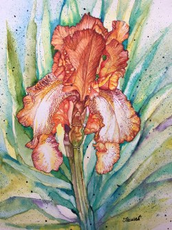 #WorldWatercolorGroup - Iris Watercolour Painting - Saswati Chakraborty - Doodlewash