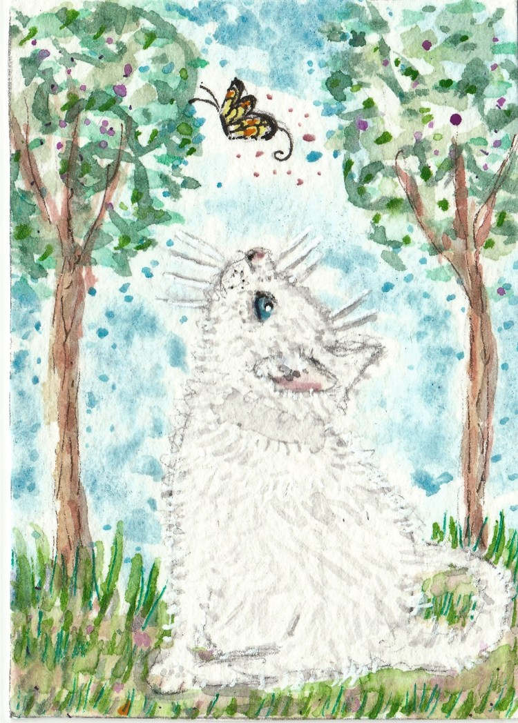 Sasha white cat kitten and the yellow Butterfly aceo watercolor IMG_20170916_0002