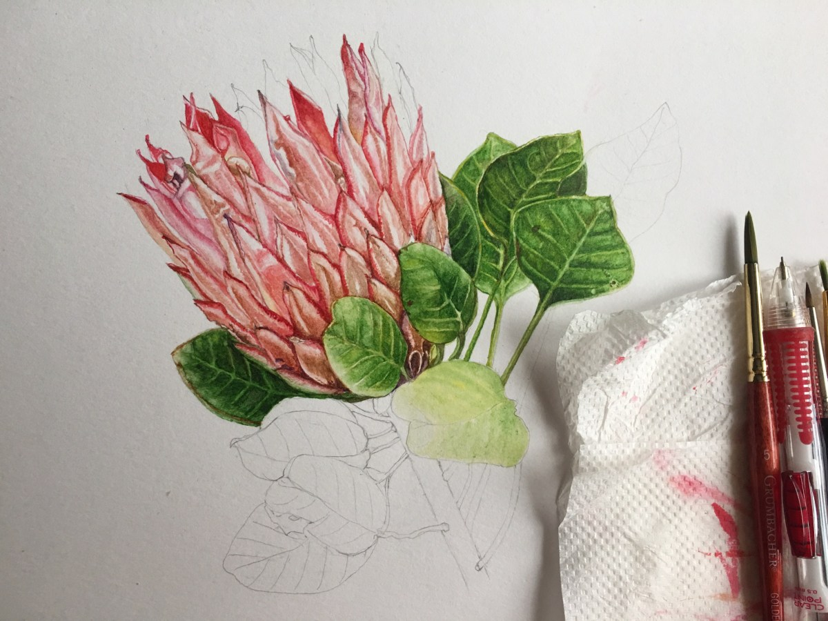 #WorldWatercolorGroup - Botanical Painting - Protea Watercolor Tutorial by Saswati Misra - Doodlewash