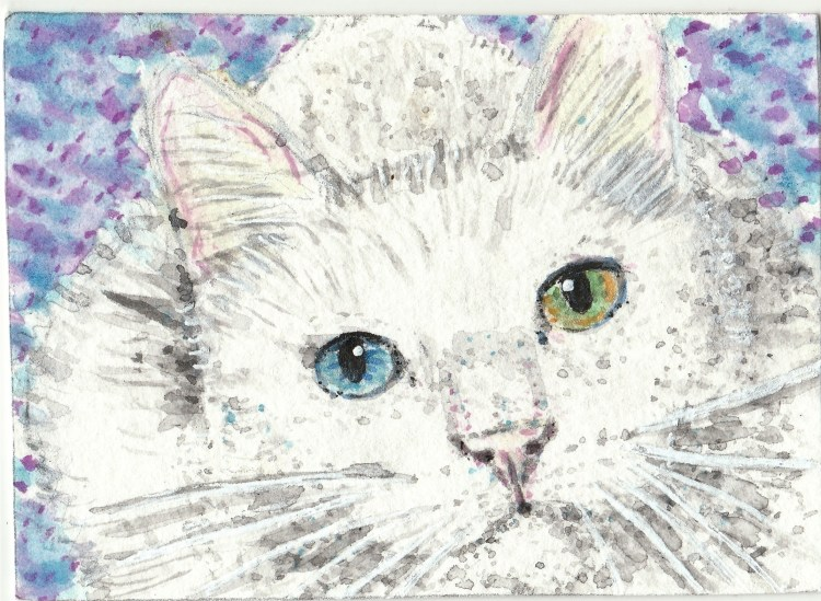 White cat blue and green eye watercolor aceo ojhh