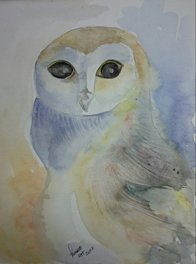 8. Owl with eye problems 🙂 8