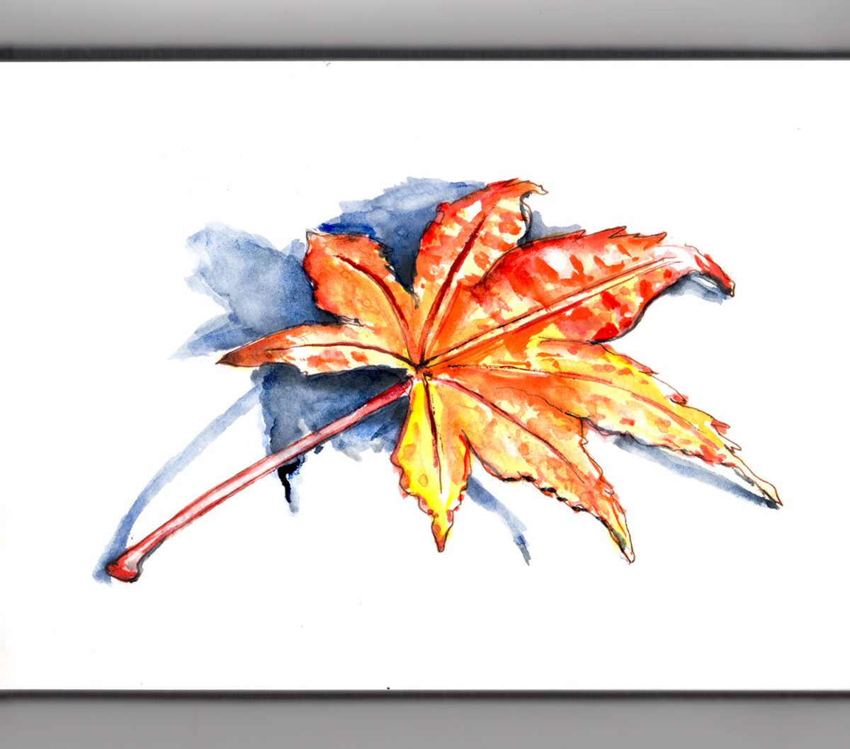 #WorldWatercolorGroup - Day 19 - Quick Little Autumn Leaf - Doodlewash