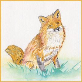 Thoughts of a Golden Fox Illustration by Beverly Dyer