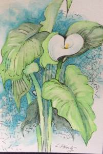 Calla Lily – I reworked this floral watercolor by adding a more interesting background. fullsi