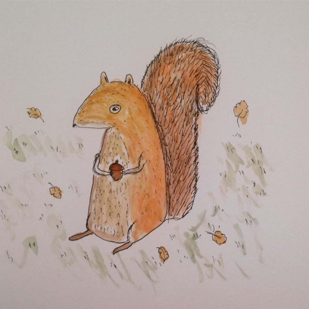 On catch up again…..yesterday's prompt was acorns…here is a little red squirrel wi
