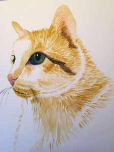 """Inspired by watching GUEST ARTIST: """"In Liquid Color"""" by Denise Soden, so I took this close up of"""