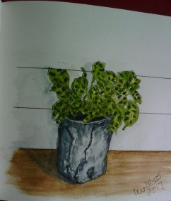 watercolour, urban sketching, life sketching 23435233_10154741676111504_70736900254769125_n23435233_