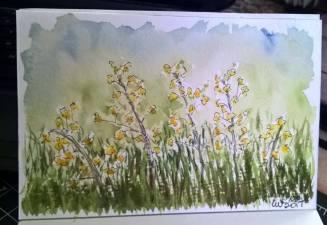 watercolour, urban sketching, life sketching sketching 23376271_10154741673321504_912254698241616197