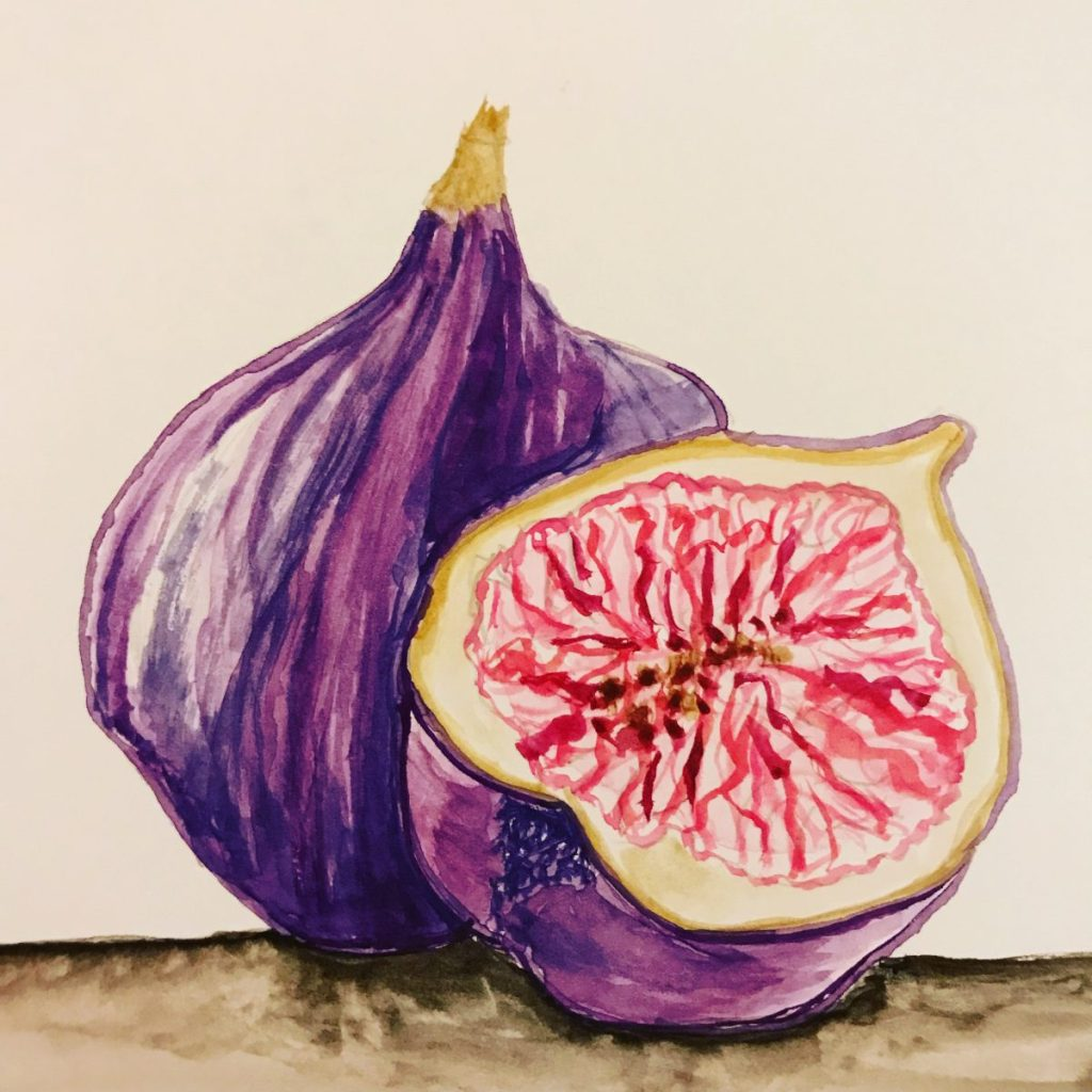 Here's my fig for this month's challenge. I used Charlie's fig as inspiration. Thanks Charlie.