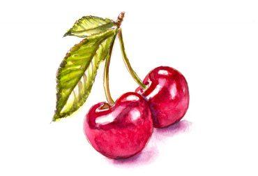 #WorldWatercolorGroup - The Cherry On Top - Cherries - Doodlewash