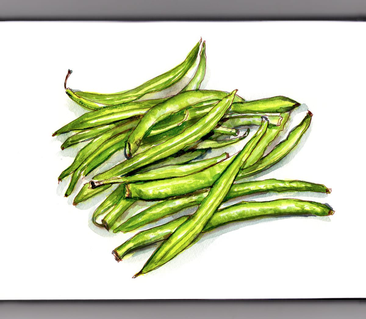 #WorldWatercolorGroup - Day 15 - Some Green Beans - Doodlewash