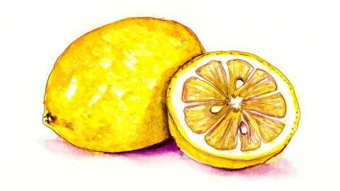 #WorldWatercolorGroup - Day 22 - A Bit Of Lemon - Doodlewash