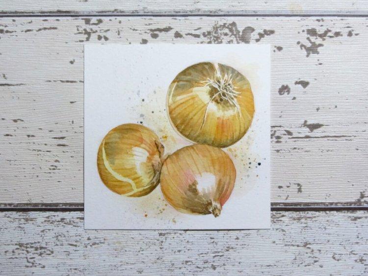 Onions! #worldwatercolorgroup Onions