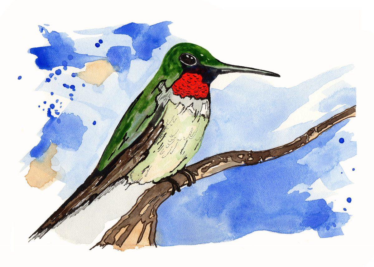 #WorldWatercolorGroup - Watercolor by Kenley Jones - Doodlewash