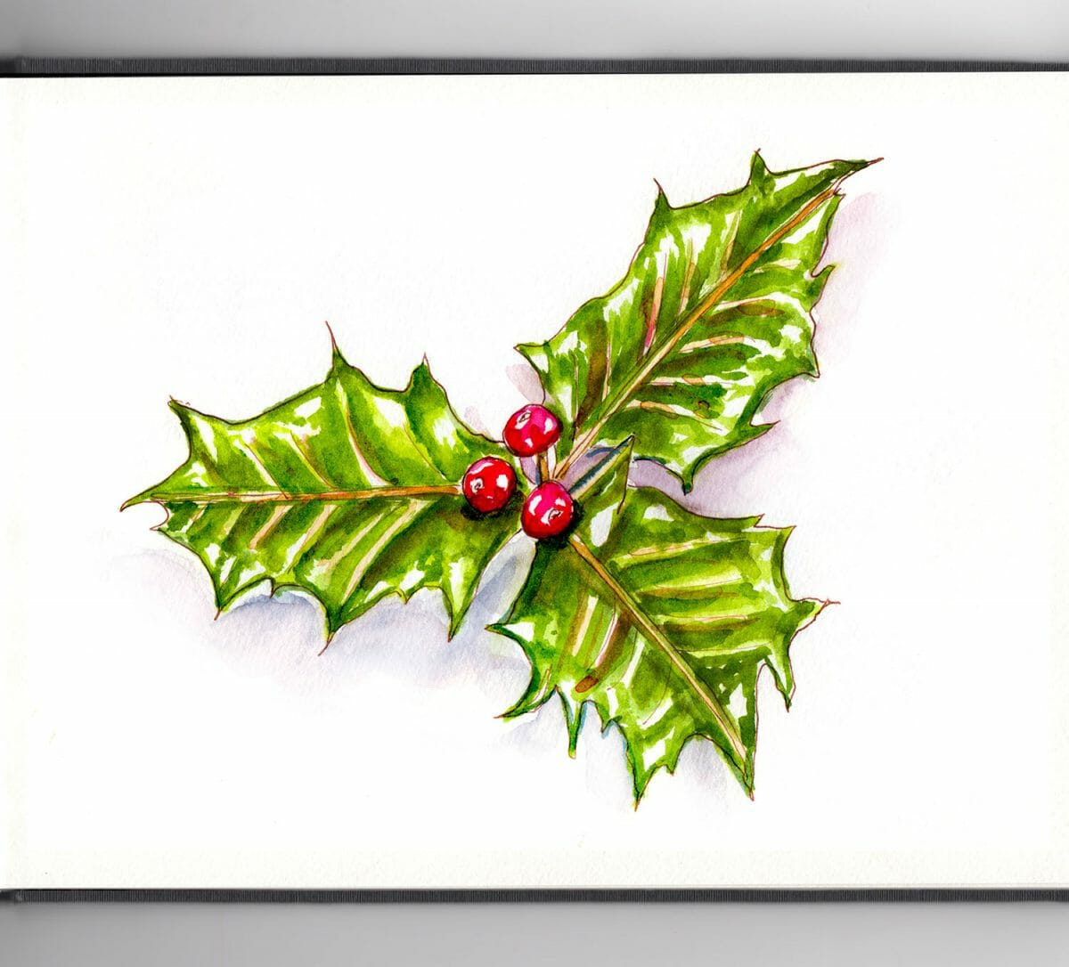 #WorldWatercolorGroup - Day 4 - Haul Out The Holly - Doodlewash