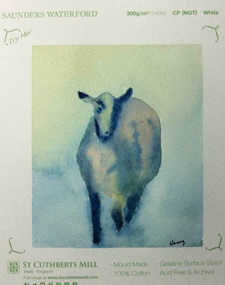 This is Arnold, my Suffolk sheep. I did this pretty quick just this morning and I am so pleased with
