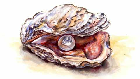 #WorldWatercolorGroup - Day 24 - A Pearl Inside Oyster Shell - Doodlewash