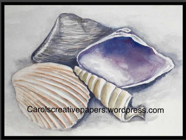 Shells from the prompt a few days ago 🐚 6DF16A61-D259-4636-9A9C-322A4B4181FC