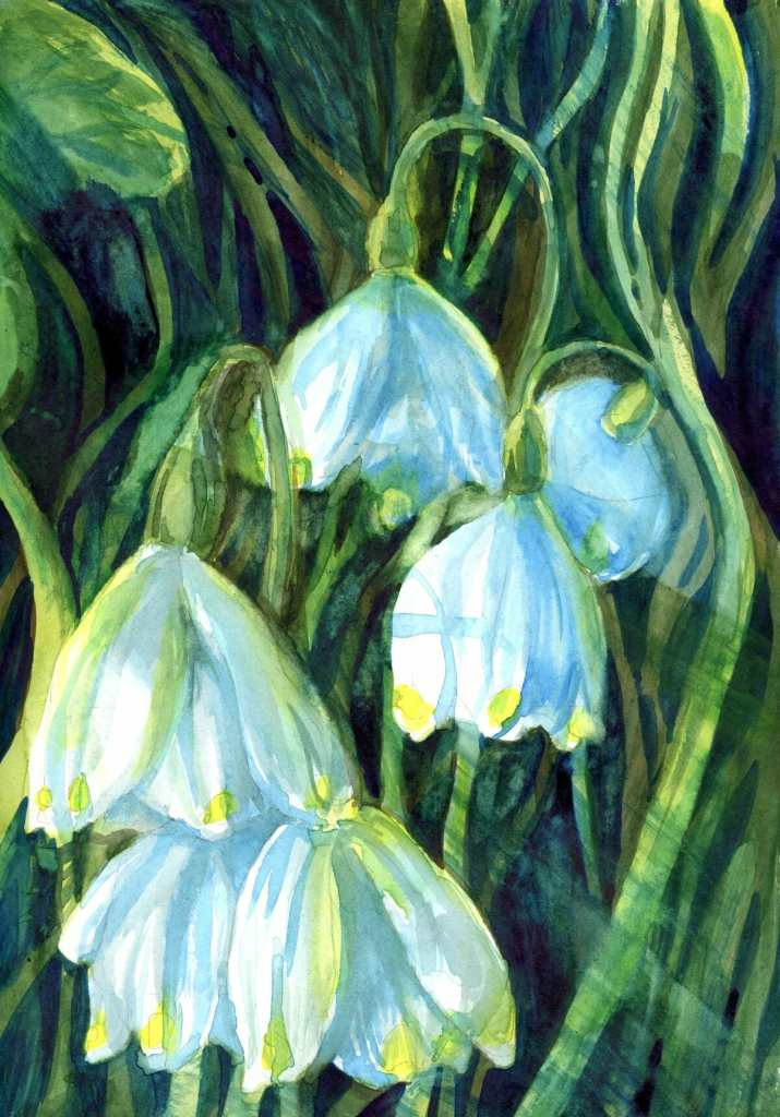 Are Snowdrops considered Wildflowers? Close enough for this time of year, I think. I hope. 9 Mar Sno