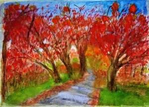 Challenge 16. februar – trees. Autumn Trees IMG_20170315_222837