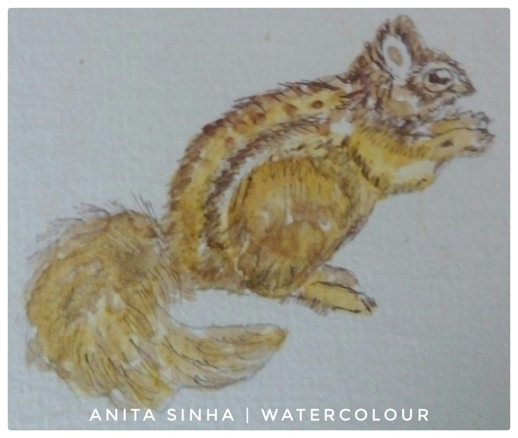 #Day21 #Squirrel #Turmeric and Hibiscus flower powder painting with water #Pigma micron 003 pen #Feb
