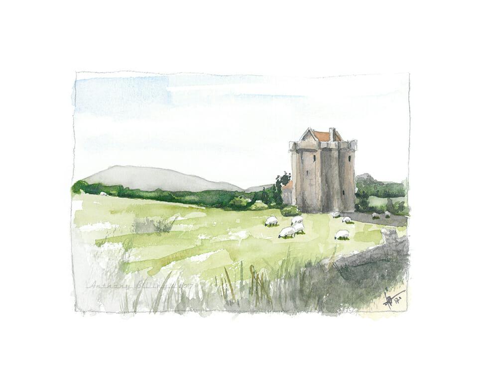 Irish Wool – a quick 5×7 sketch IrishWool_web