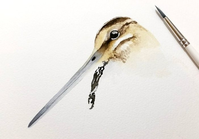 #WorldWatercolorGroup - Watercolor by Tracey Hollis Rowe - Doodlewash