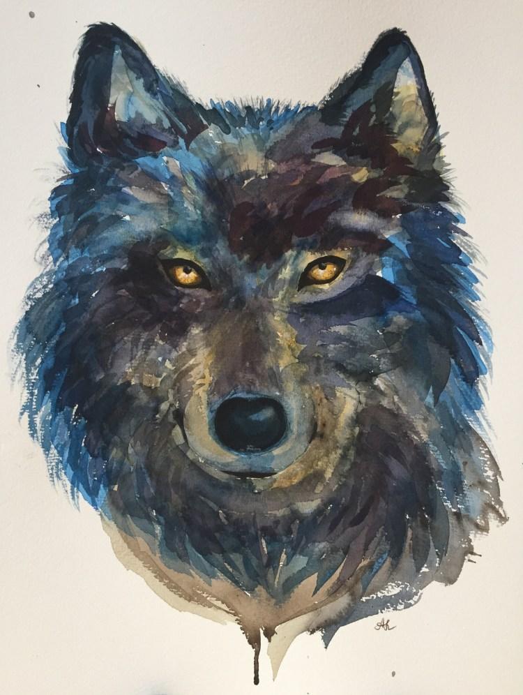 Polar wolf 68E736FA-2DAD-4438-94C6-DB114E8DE160