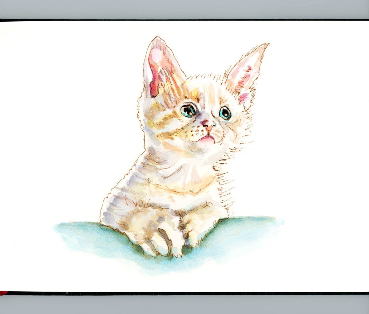 #WorldWatercolorGroup - Day 10 - Tiny LIttle Kitten - The Little Of Things - Doodlewash