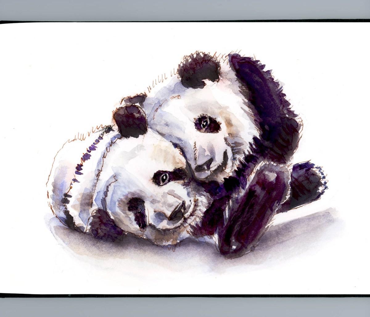 #WorldWatercolorGroup - Day 14 - Giant Panda Love - Doodlewash