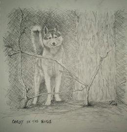 #doodlewashApril2018 Jamie Fraser – portraitOakley in the woods – complete
