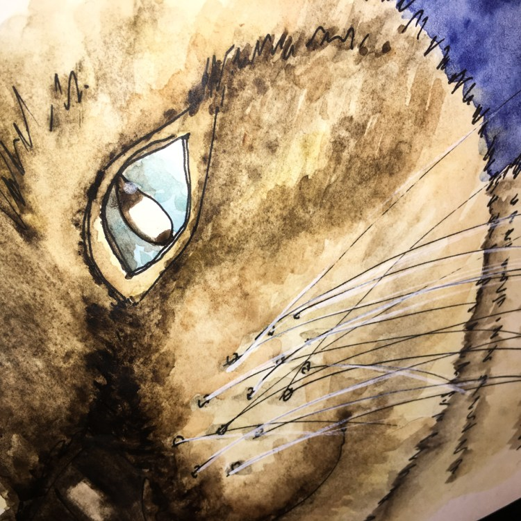 I talk about the mix I came up with to paint Siamese: https://dkatiepowellart.me/2018/03/09/painting