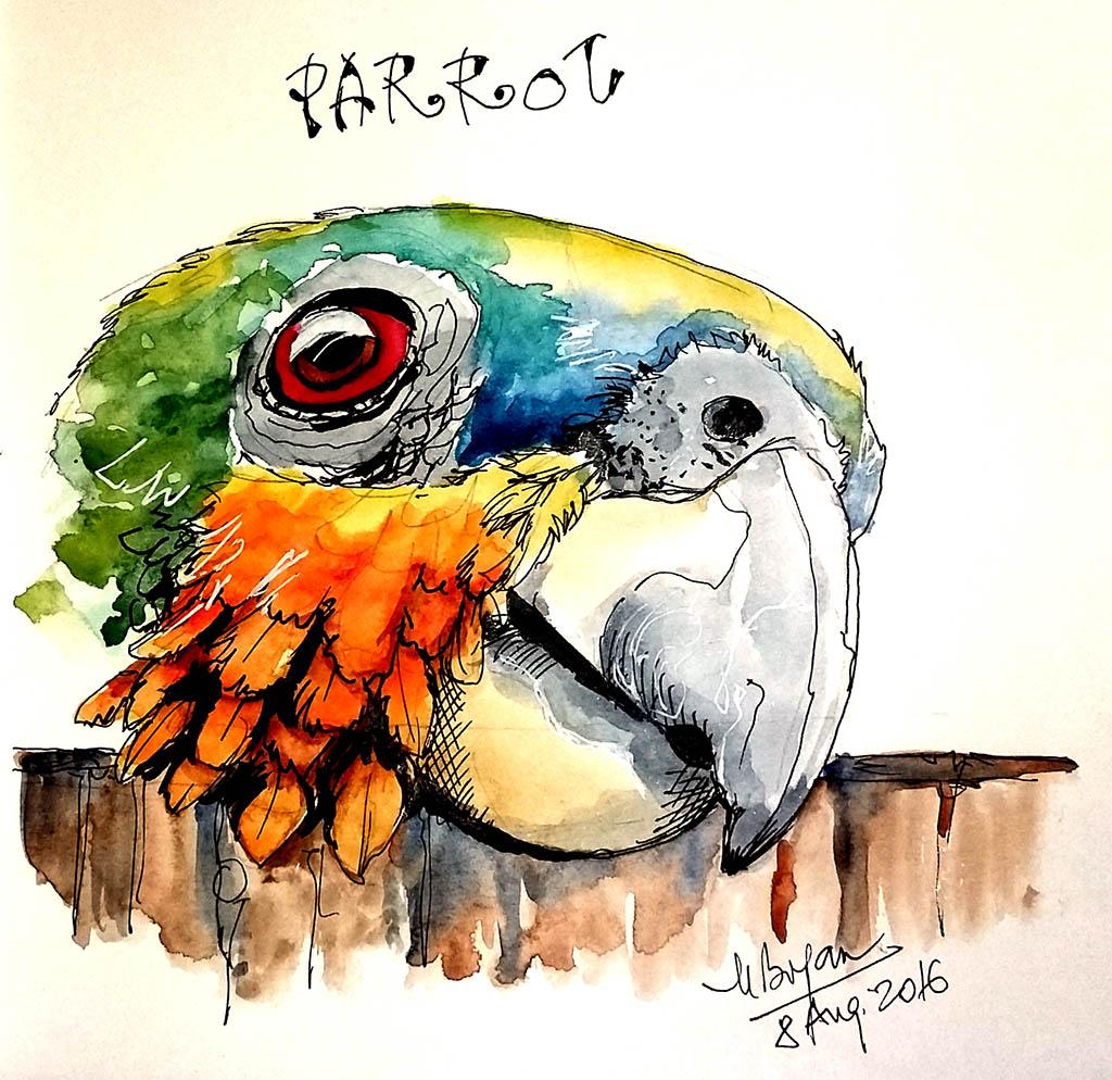Watercolor Painting by Mishu Bogan - Parrot - Doodlewash #WorldWatercolorGroup