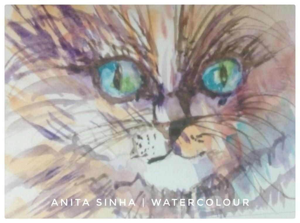 #Day4 #Furry #DoodlewashMarch2018 #Furry cat Cat