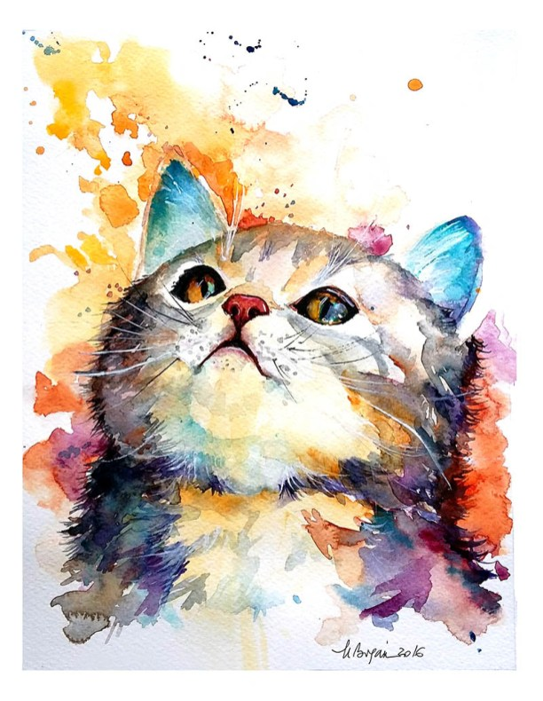 Watercolor Painting by Mishu Bogan - Cat Curiousity - Doodlewash #WorldWatercolorGroup