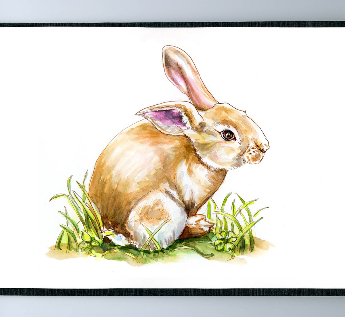 Day 2 - Bunny Rabbit Watercolor Sketch - Doodlewash