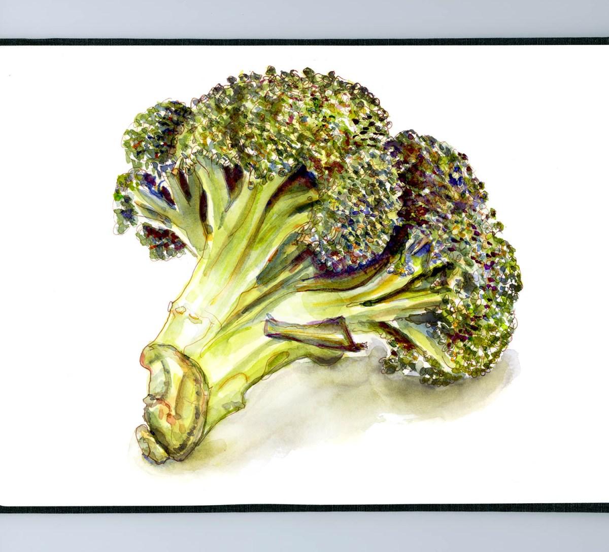 Day 23 - Broccoli - Eating Little Trees - #doodlewashApril2018 Doodlewash