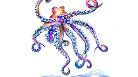 Day 28 - Visiting The Aquarium - Octopus Watercolor - #doodlewashApril2018 Doodlewash