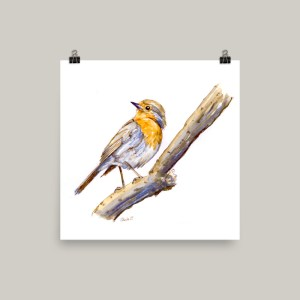 English Robin Watercolor Print