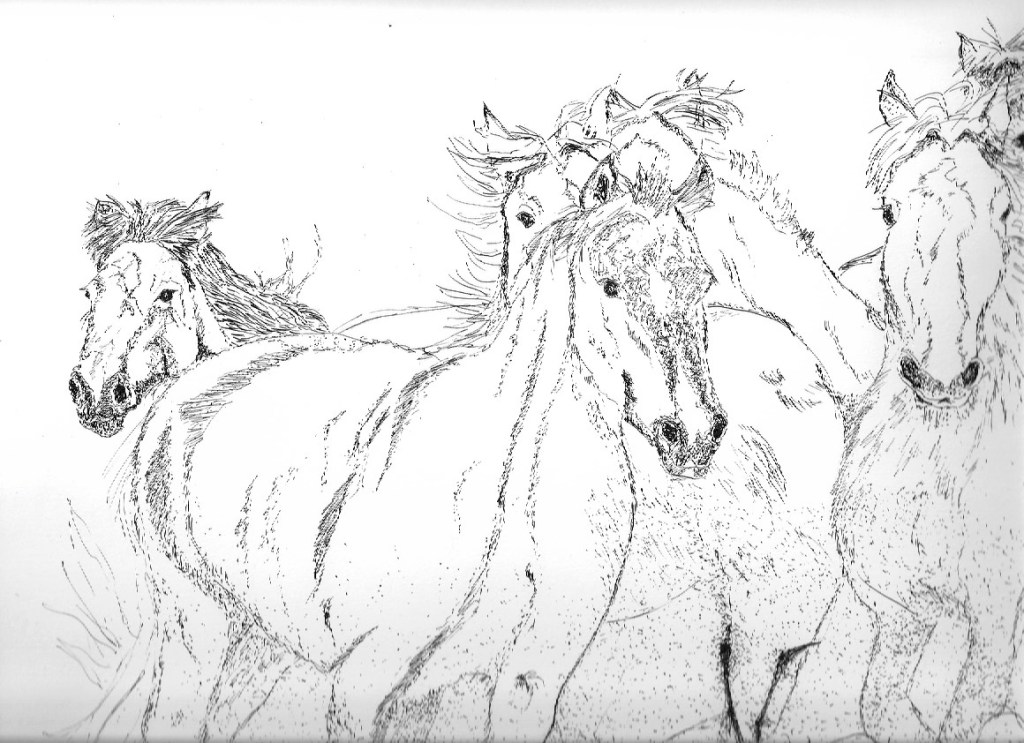 Ink drawing of horses Herd of Horses in Ink