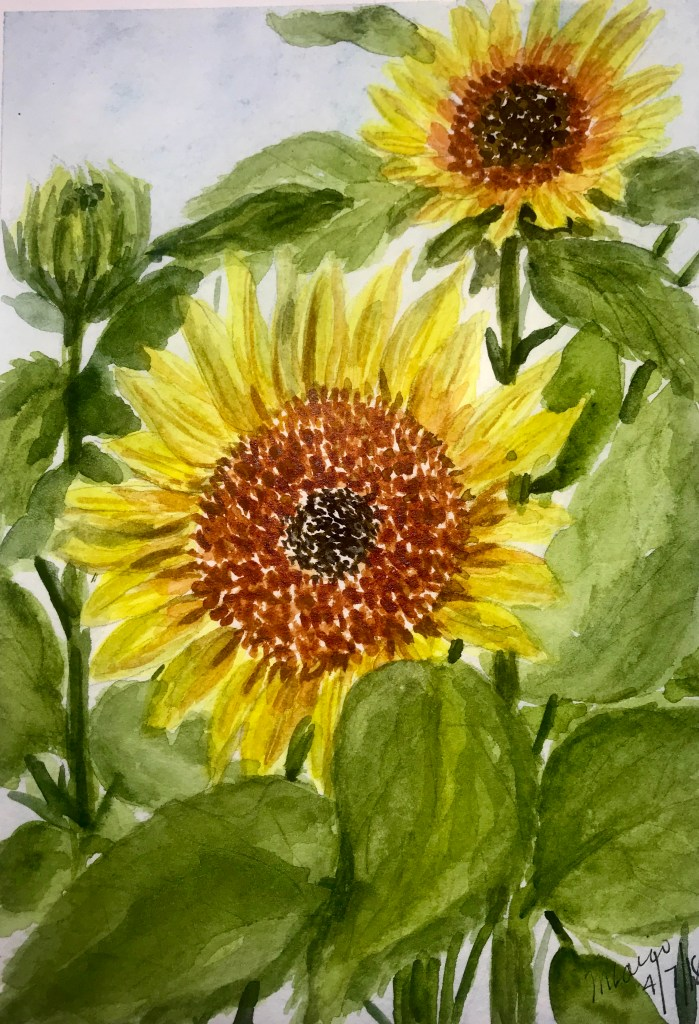 """""""Proud to be a Sunflower""""… Daniel Smith Watercolors on Strathmore Paper… 5&#"""
