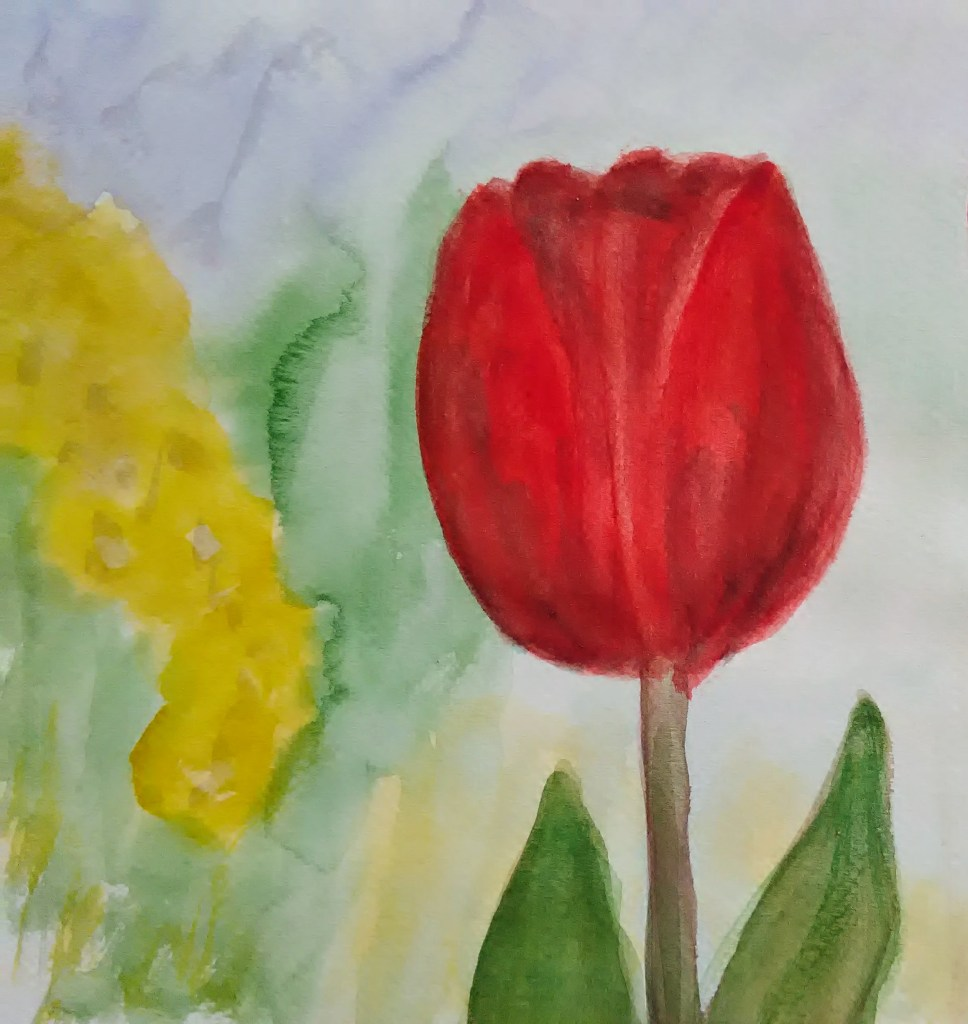 Today people with Parkinson's have their day. The symbol is a red tulip. I wish me and other P