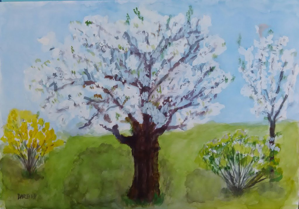 my spring garden IMG_20180418_092232