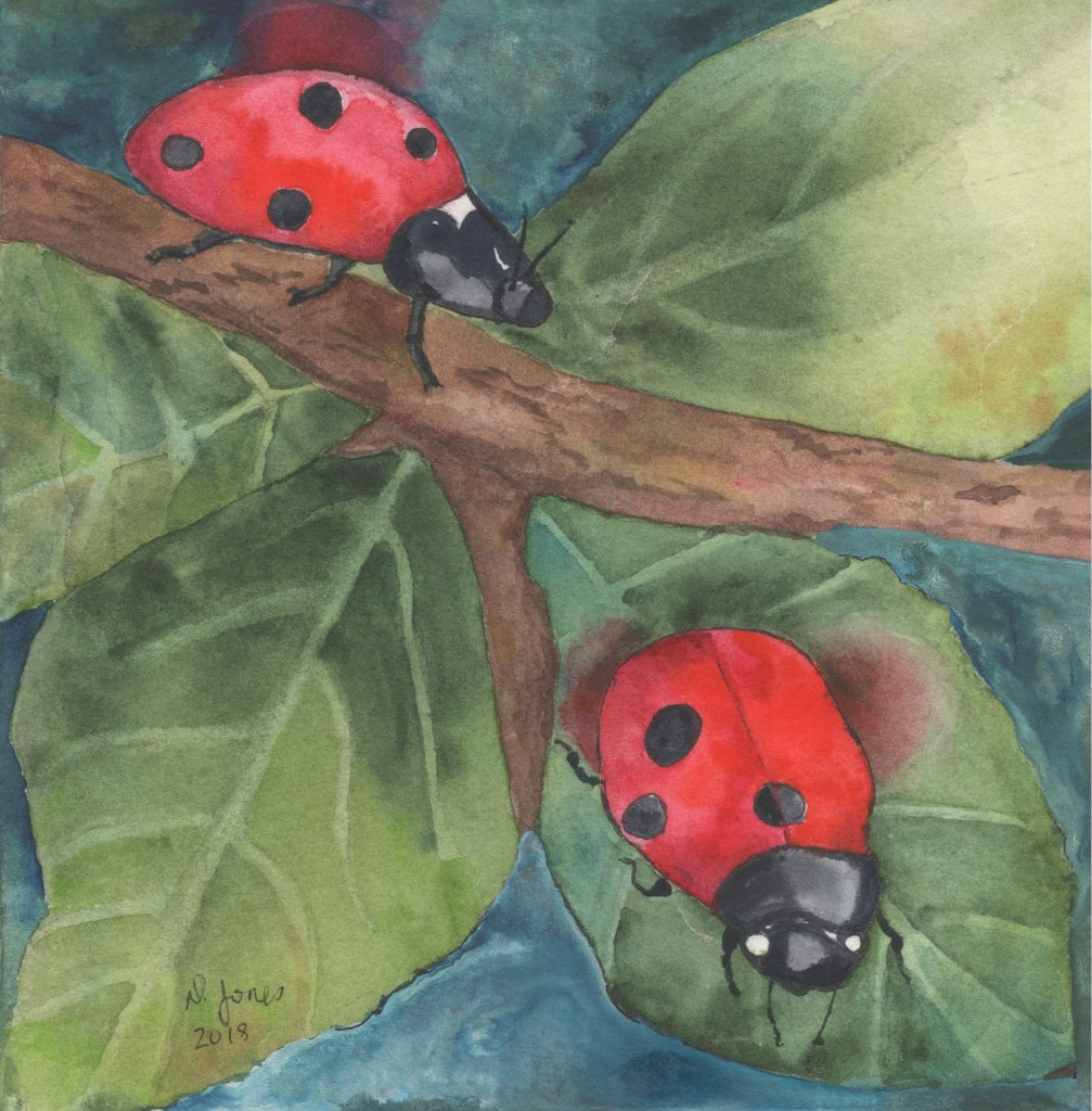 This one I was inspired to paint because I was working in the garden and had a ladybug land on me! L