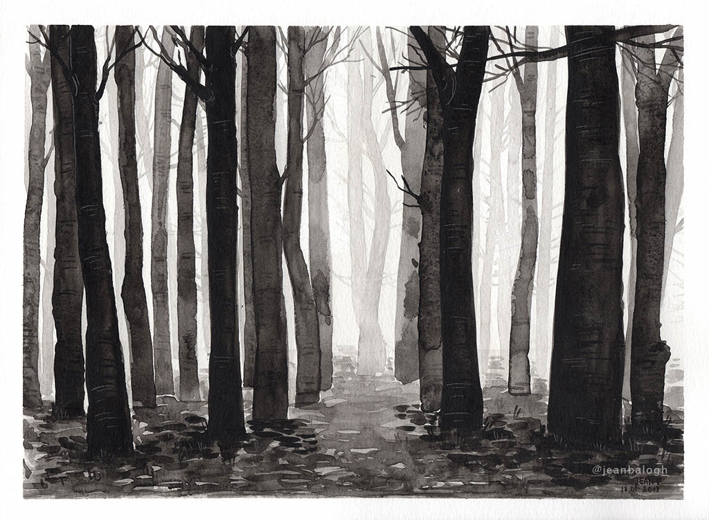 Monochrome Forest - Watercolor Illustration by Jean Balogh - Doodlewash