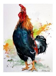 Watercolor Painting by Mishu Bogan - Rooster - Doodlewash #WorldWatercolorGroup