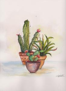 Pen and watercolor Tana's Cacti