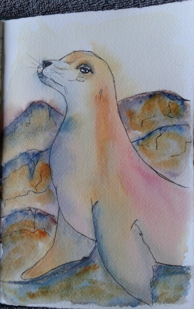 Day 329…seals My little seal obviously needed some color. While browns can be lovely, as Tim H